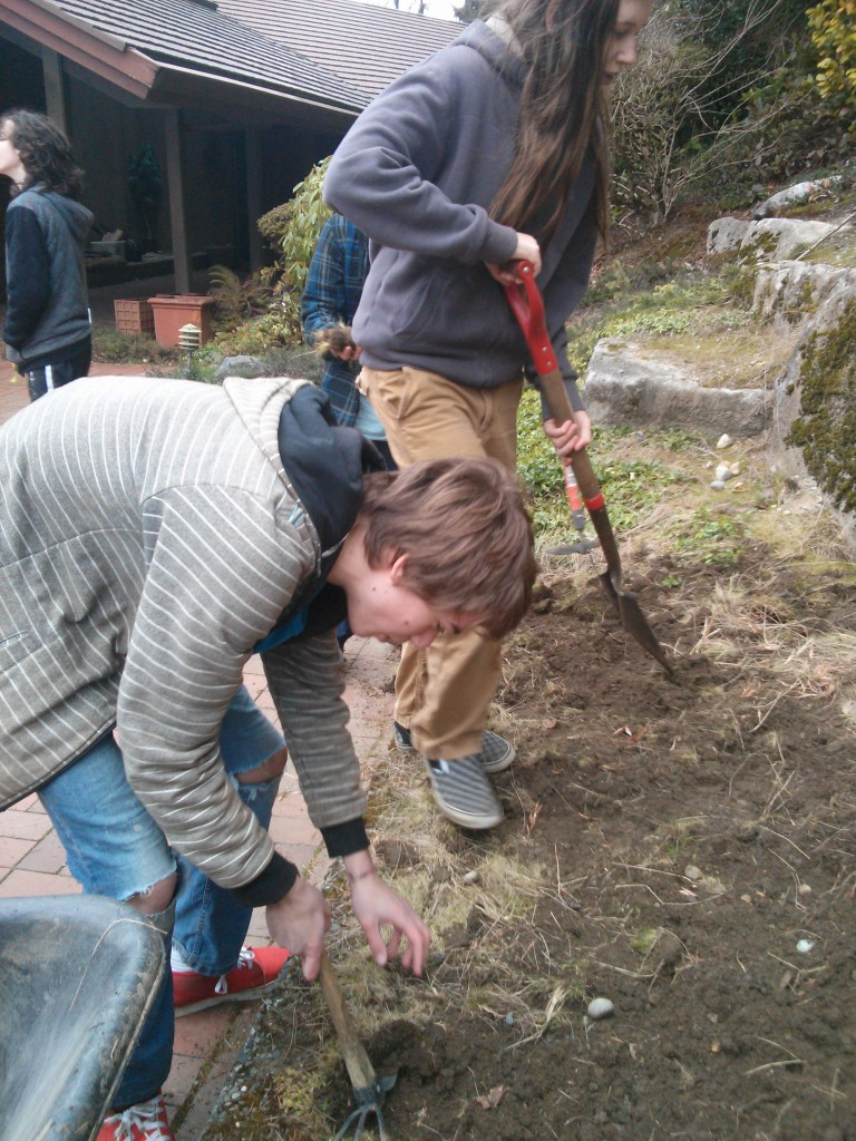 Digging up the top soil