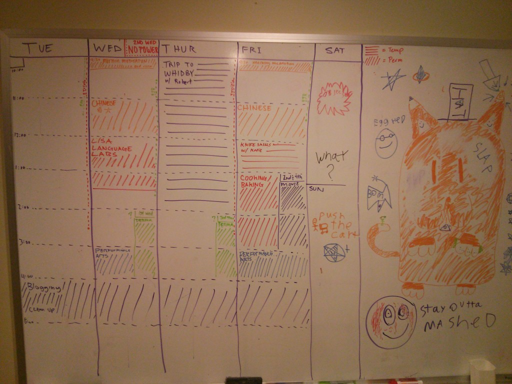 The weekly calendar. Diagonal hash marks indicate reoccurring events while straight lines indicate one time happenings.